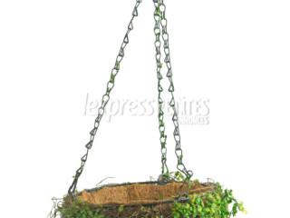 Suspended green basket