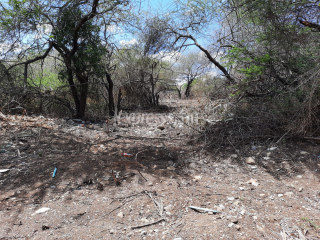 Tamarin - Residential Land - Buy