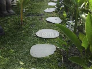 Japanese stepping stones (Tobi-Ishi)