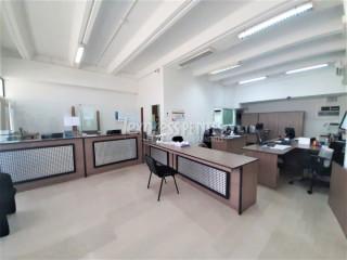 Plaine Magnien - Office - Rent