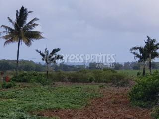 Mon Désert - Agricultural Land - Buy