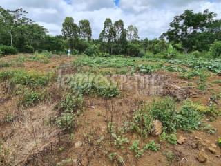 Ecroignard - Residential Land - Buy