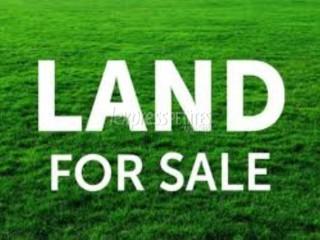 Bois Pignolet - Residential Land - Buy