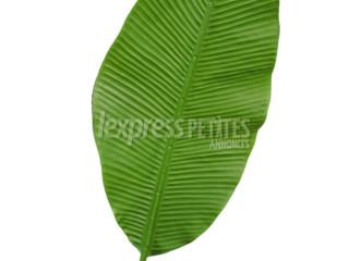 Artificial banana leaf
