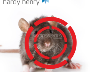 Pest control- Rodents