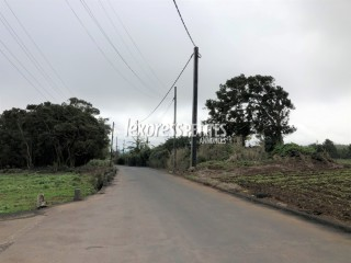 Curepipe - Agricultural Land - Buy